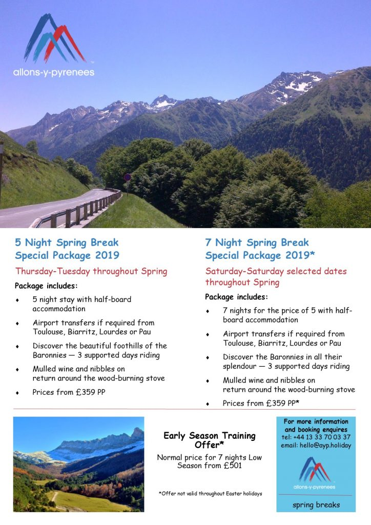 Spring Offers 2019